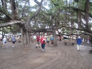 Hawaii - 2013 037